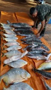 pma-pescados