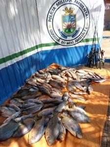 Pescado-PMA-4-set-2015